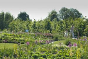 Foto van deel van het Maximápark: je ziet een volwassene en een kind in een groene tuin vol gekleurde bloemen. Bron: https://www.visit-utrecht.com/locations/2713556086/maximapark